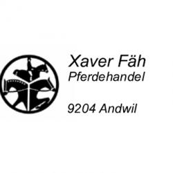 Xaver Fäh