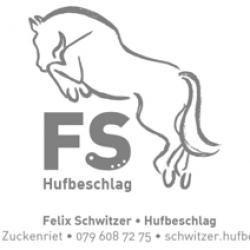 Felix Schwitzer
